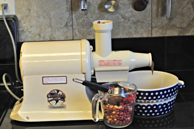 Equipment for making homemade peanut butter on a work surface