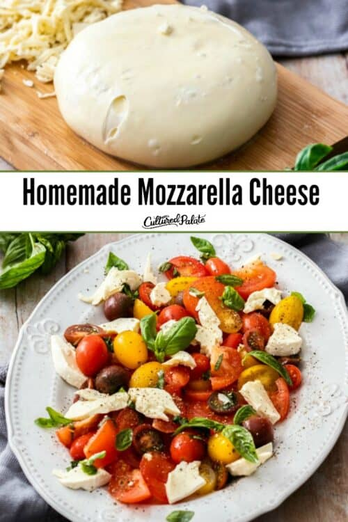 Homemade Mozzarella Cheese shown in round ball and made into a salad.