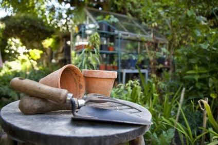 Garden Time! – Part 2
