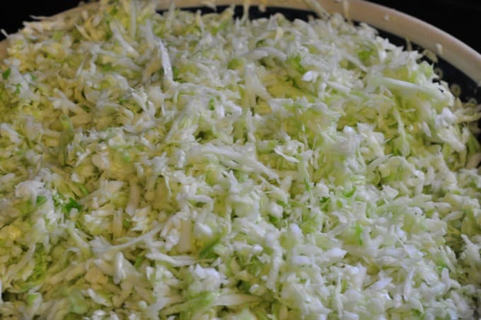 A close up of cabbage shredded to make homemade sauerkraut