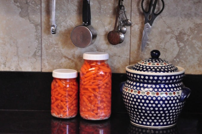 carrots fermenting