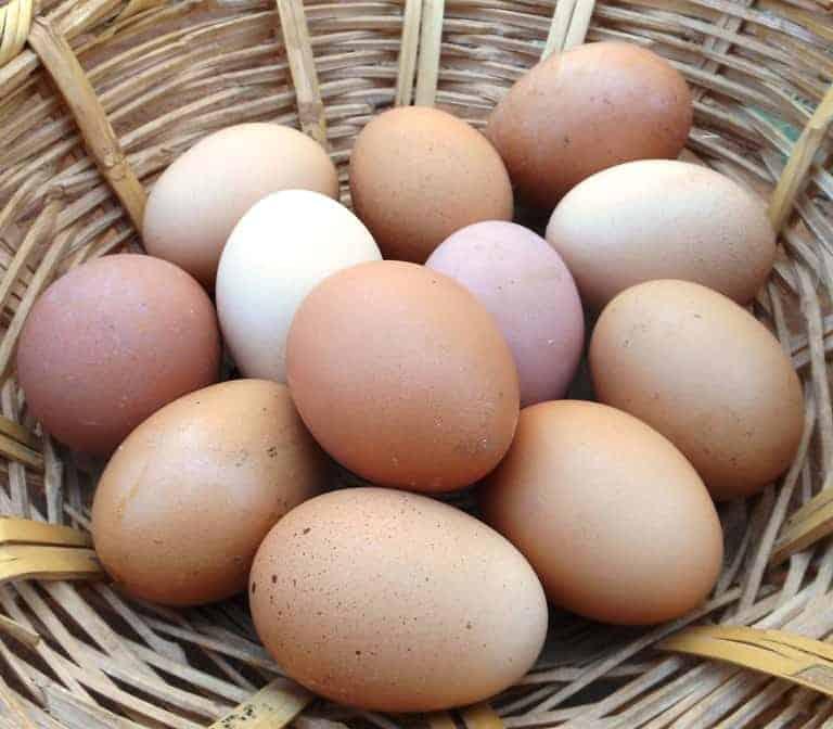 Cholesterol – The Unsung Antioxidant