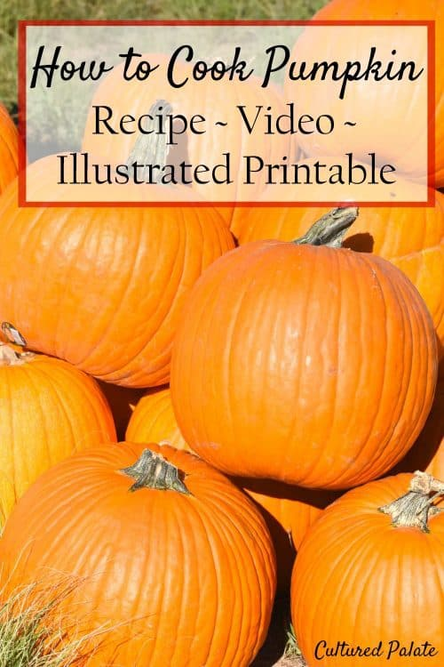 lots of pumpkins stacked up for How to Cook Pumpkin article