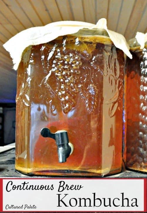 continous brew kombucha shown in glass jar