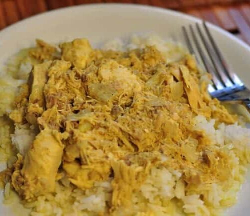 chicken curry on a plate with a fork