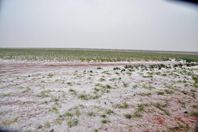 snow May 10