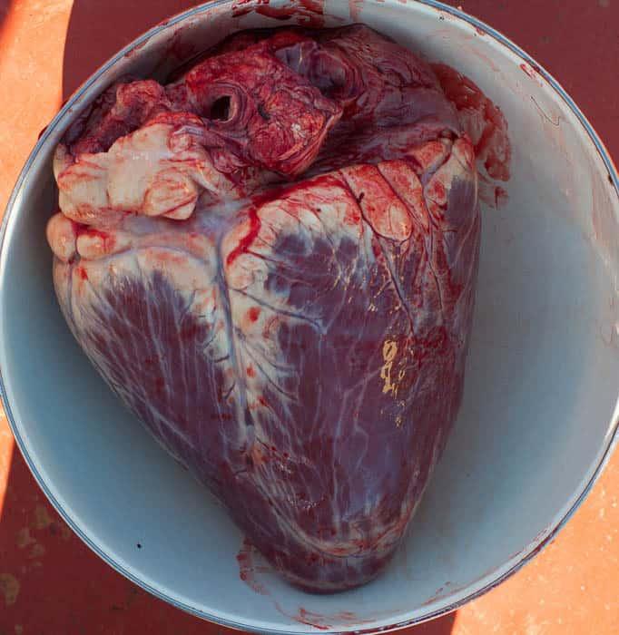 grass fed beef heart