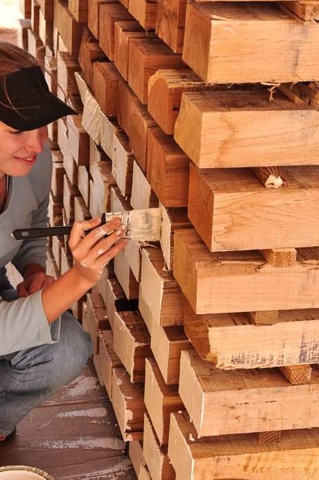 painting oak hardwood lumber for drying