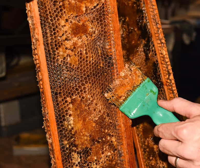 Extracting Honey from Honeycomb