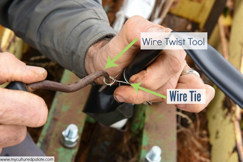 Preparation for Planting Grapevines Twisting the Wire Ties
