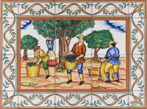 769 Harvesting Olives