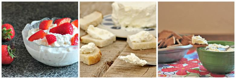 Simple Cheesemaking Collage 2000 - cottage cheese, cream cheese, ricotta cheese
