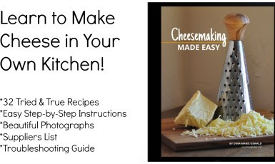 Cheesemaking Made Easy Ebook is Here!