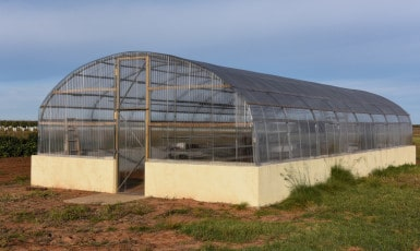 The Greenhouse is Finished!