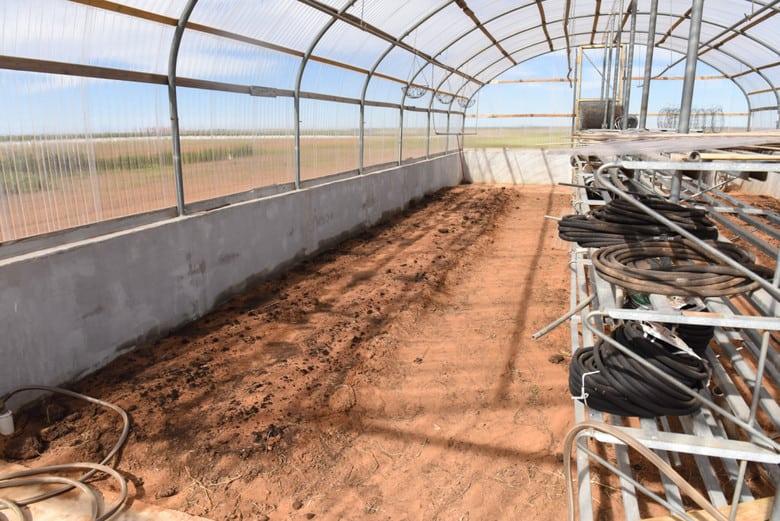 ICF Greenhouse - Winter Garden Planted