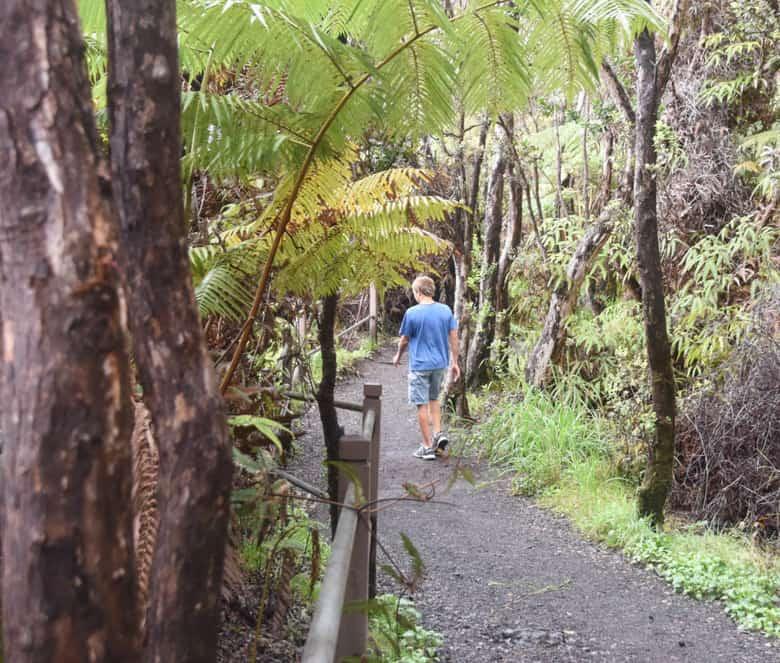 Mauna Loa Trails