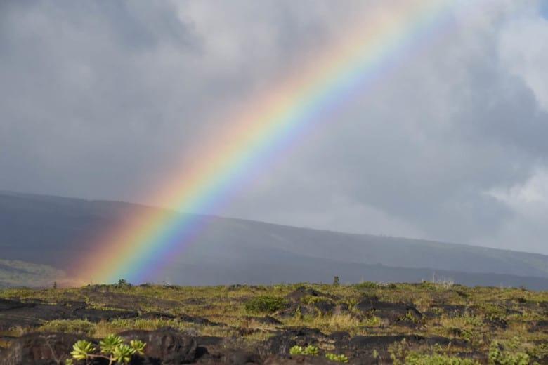 Mauna Loa Park