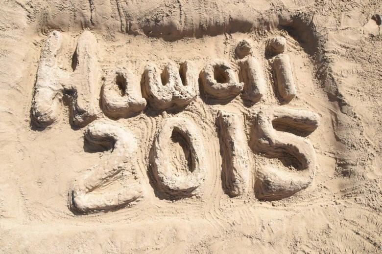 Hawaii 2015 Sand Sculpture