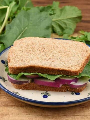 A Gourmet Radish Sandwich sitting on a plate