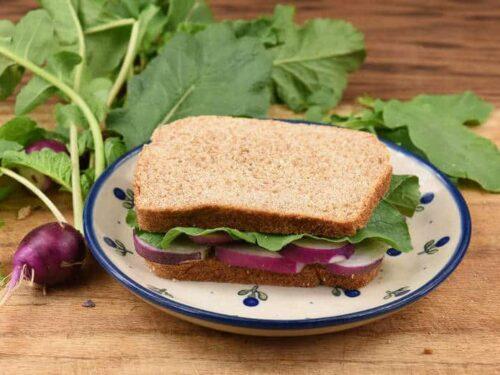 A Gourmet Radish Sandwich sitting on a plate