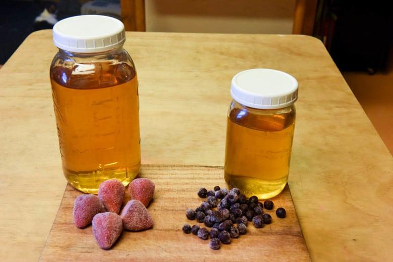 Fruit Flavored Kombucha