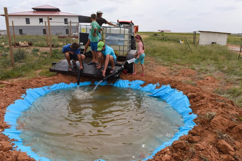 New duck pond how to make your own cultured palate for Make your own pond liner