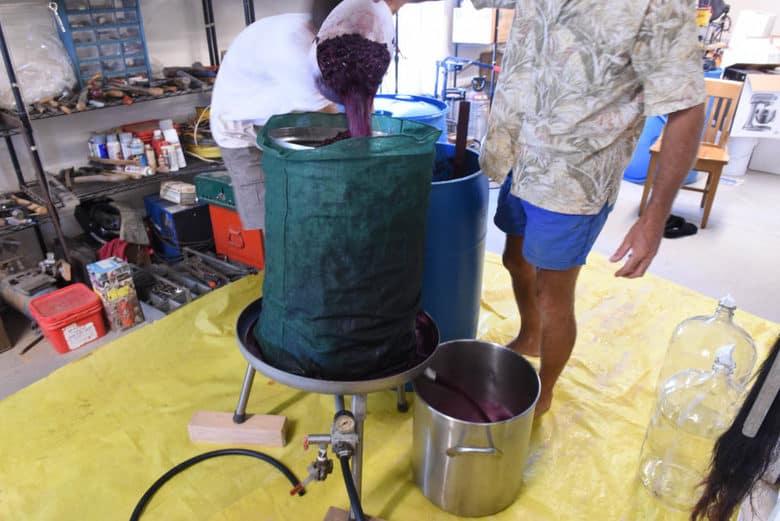Making Wine at Home - Bladder Press