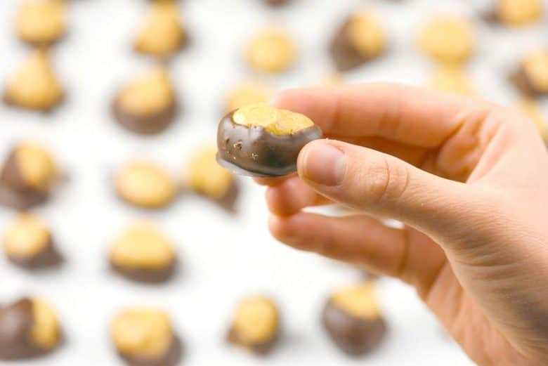 A hand holding one buckeye cookie. A buckeyes recipe for how to make buckeyes
