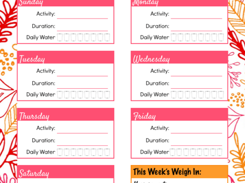 exercise log page shown from daily life planner
