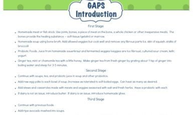 Daily Life Planner – GAPS Intro Diet at a Glance