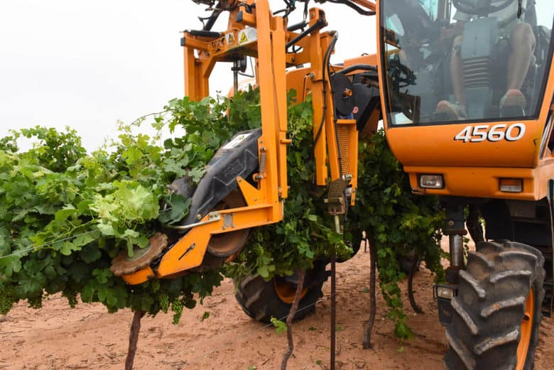 Canopy Management in the Vineyard - Pellenc 4560
