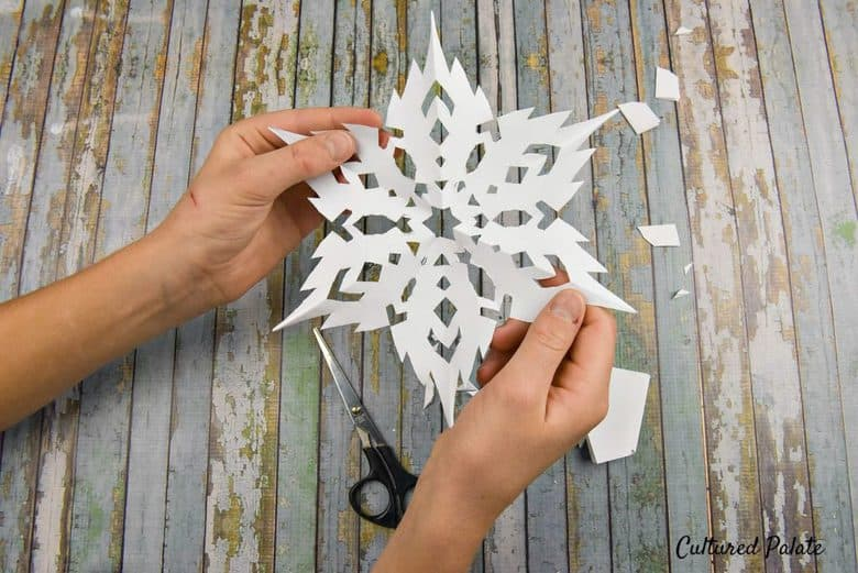 How to Make a Snowflake unfold and admire