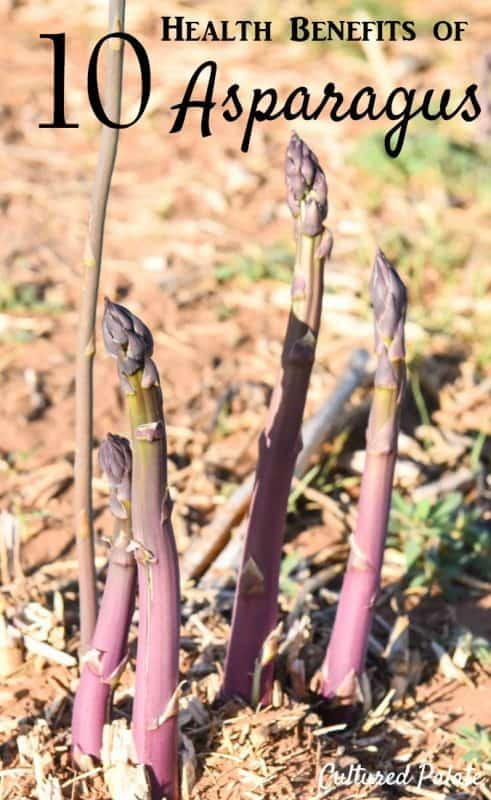 Health Benefits of Asparagus - showing purple passion