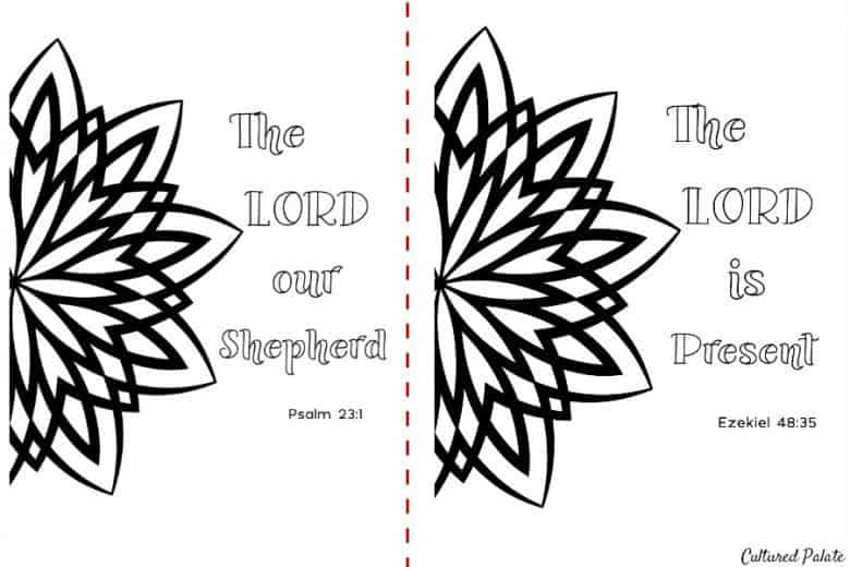 Coloring Pages for Adults - 2 of 5 designs in the set shown