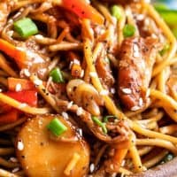 Easy Crockpot Chicken Lo Mein - The Chunky Chef