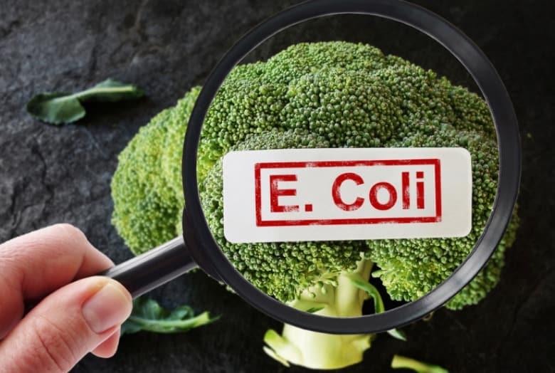 Broccoli shown through a magnifying glass with E. coli in text overlay.